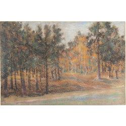 Meža ainava