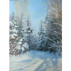 Skaista ziema