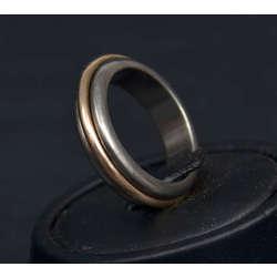 Titāna un zelta gredzens